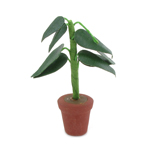 Plante (Vert)