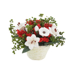 Flower Pot (Red)