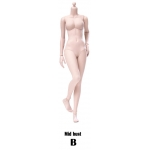 Xing Series - Modified Version Super Flexible Pale Female Body (Middle bust)