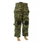 Crye Gen 2 Pants (AOR2)