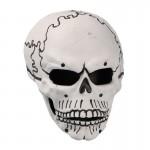 Skull Mask (White)