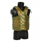 Elvish Body Armor (Gold)