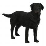 Labrador Dog (Black)