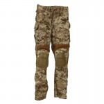 Female Crye Gen 3 Pants (AOR1)