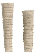 Female Arm Bandages (Beige)