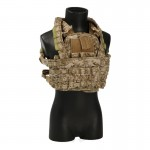 Assault Vest with Chestrig and Camelback (AOR1)