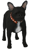 French Bulldog Dog (Black)
