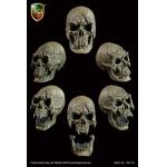 Headsculpt Evil Skull (Gris)