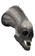 Damaged Xenomorph Alien Skull (Grey)