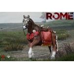 Rome Imperial Legion - Imperial General Horse