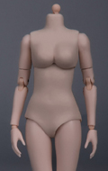 Caucasian Female Body
