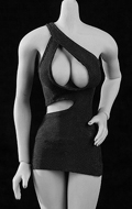 Female Open-Breasted Dress (Black)