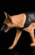 The Loyal Warrior - Chien The Fighting Spirit Malinois avec gilet tactique (Beige)