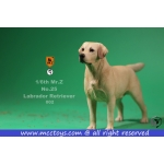 Labrador Retriever Dog (Beige)