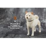 Shiba Inu Dog (White)