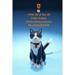 Felis Catus Domesticus Cat (Black)