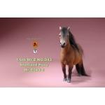 Shetland Pony (Brown)