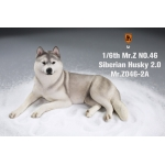 Siberian Husky Dog 2.0 (Grey)