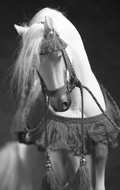 Akhal-Teke Horse with Accessories Set (White)