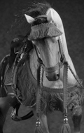 Akhal-Teke Horse with Accessories Set (Sand)