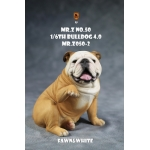 Chien Bulldog anglais V4.0 (Beige)