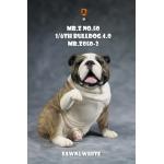 Chien Bulldog anglais V4.0 (Coyote)