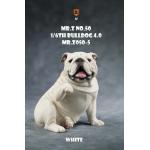 Chien Bulldog anglais V4.0 (Blanc)
