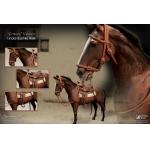James Dean Horse Accessories Set (Marron)