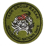 Task Group Rasar Patch (Olive Drab)