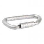 Carabiner (Silver)
