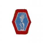 Patch 442nd Infantry Regiment (Bleu)