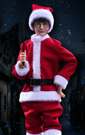 Harry Potter - Harry Potter Casual (Christmas Version)